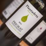 """[:ca]Els vins """"Plantadeta"""" estrenen imatge i anyada![:es]Los vinos de """"Plantadeta"""" estrenan imagen y añada[:]"""